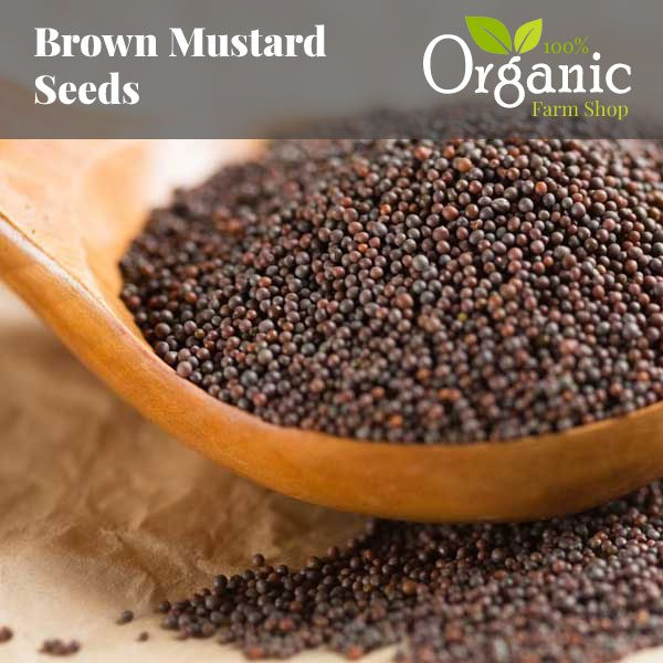 Brown Mustard Seeds - Certified Organic