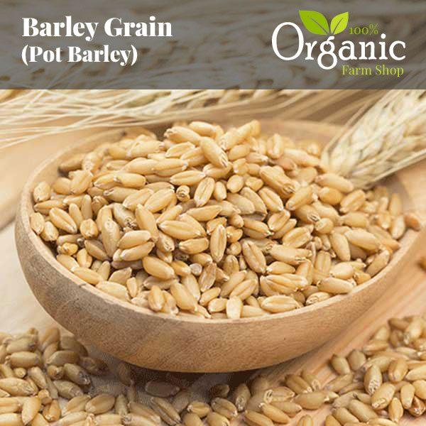 Barley Grain (Pot Barley) - Certified Organic