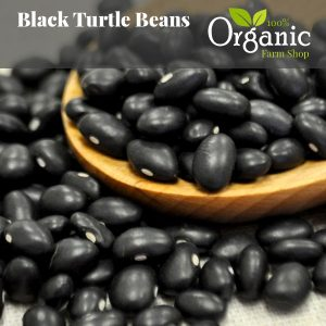 Black Turtle Beans - Certified Organic