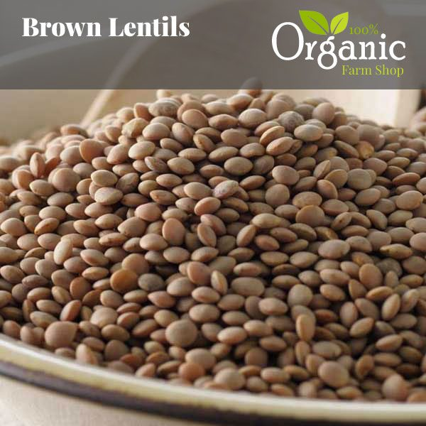 Brown Lentils - Certified Organic