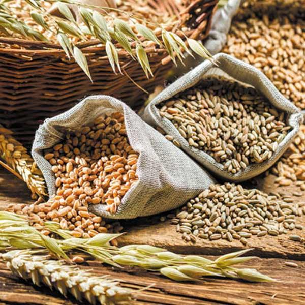 Grains & Flakes