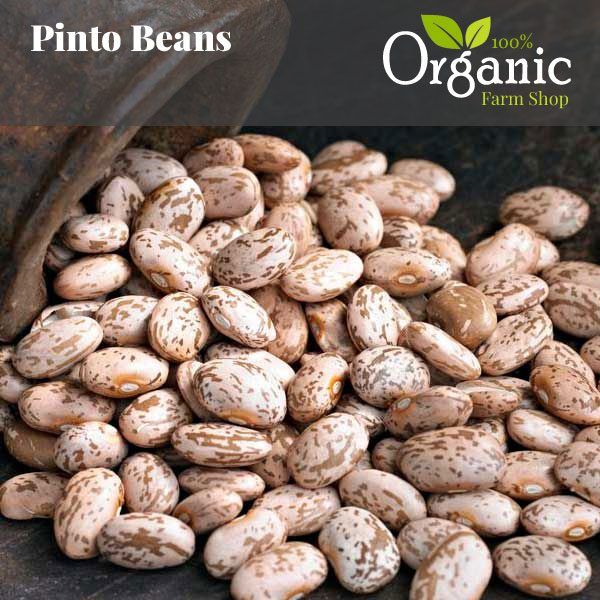 Pinto Beans - Certified Organic