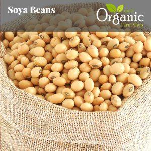 Soya Beans - Certified Organic