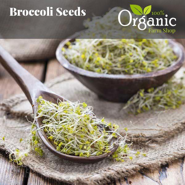 Broccoli Seeds - Certified Organic