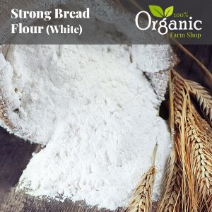 Strong Bread Flour (White) - Certified Organic